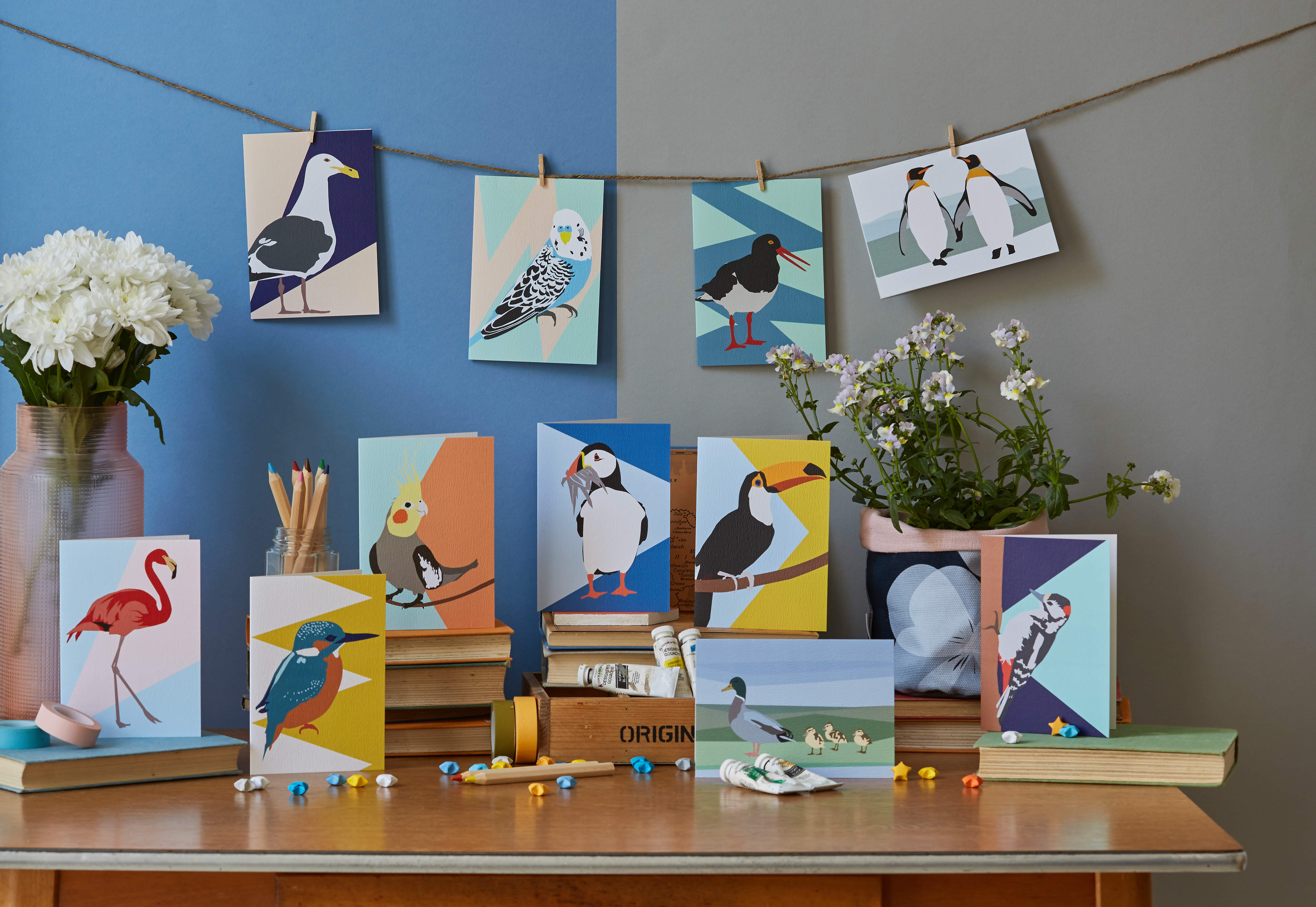 Lorna Syson bird watching collection
