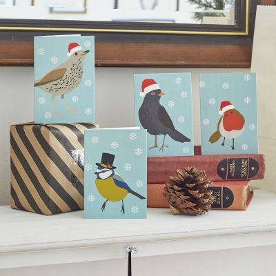 Christmas card pack with British birds wearing santa hats