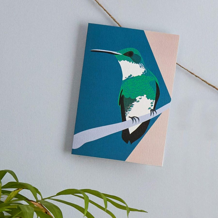 Hannah the hummingbird card, part of the bird watching collection by lorna syson