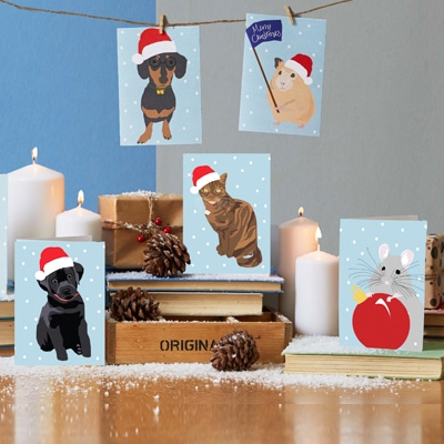 christmas pets, pets in hats christmas cards by lorna syson