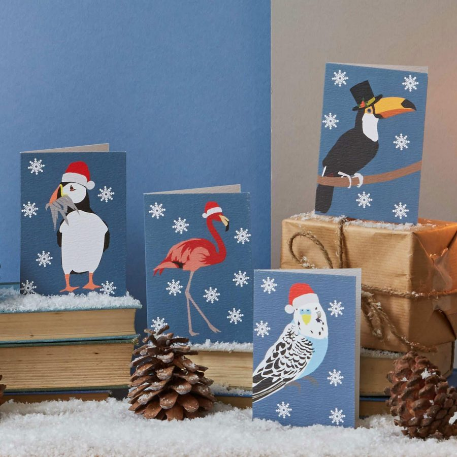 Lorna Syson tropical birds christmas card pack