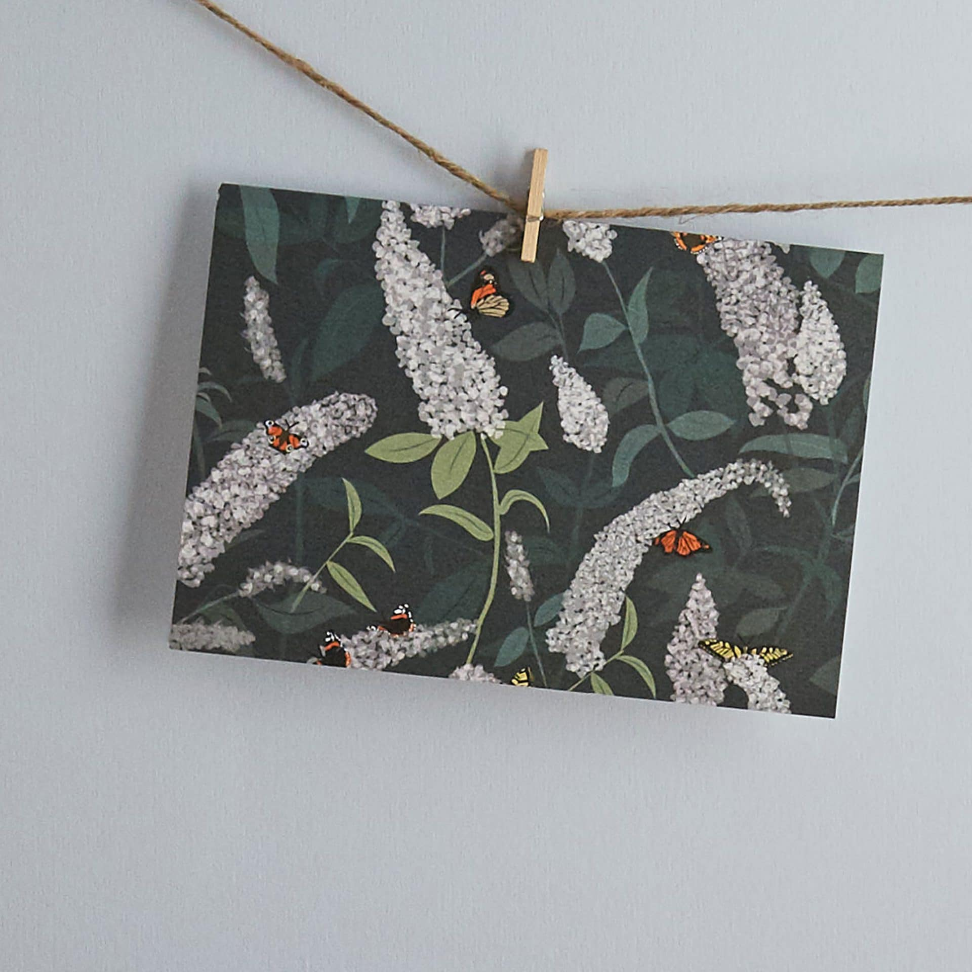 New Buddleia greeting card designed by Lorna Syson