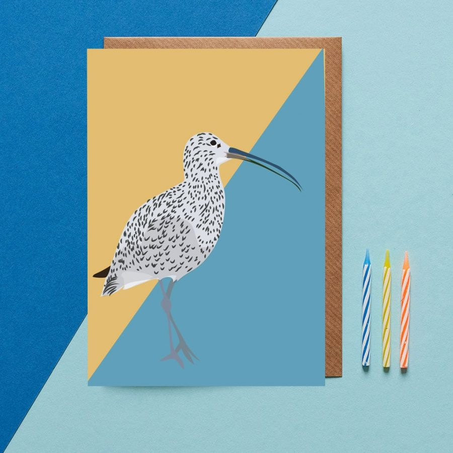 Greetings Card Luxury Designer Personalised Message Sustainable Environmentally Friendly FSC Paper Plastic Free - Curlew Card designed by Lorna Syson featuring British sea birds