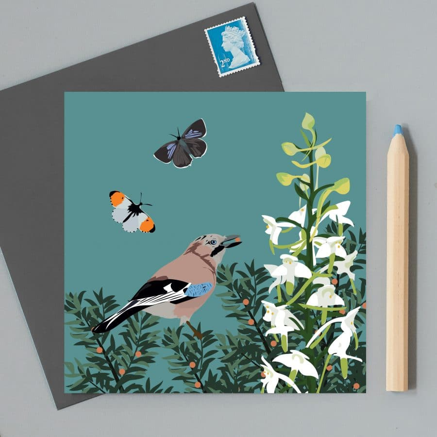 Greetings Card Luxury Designer Personalised Message Sustainable Environmentally Friendly FSC Paper Plastic Free RSPB bird - jay