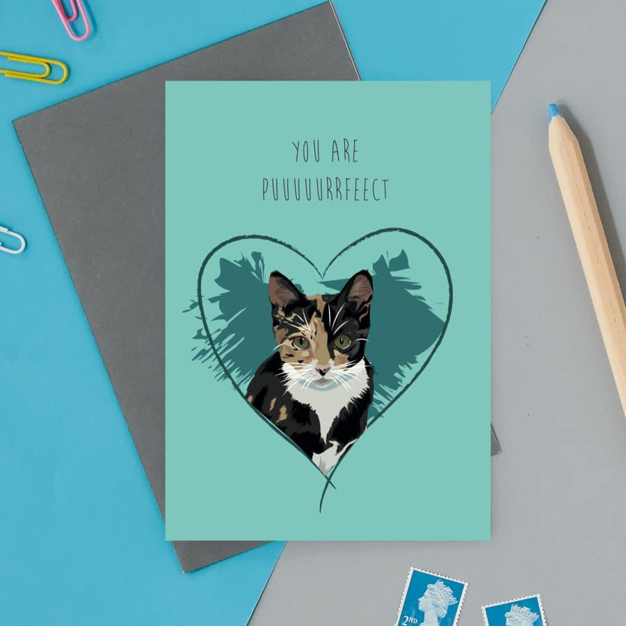 love valentines greeting card cat card eco friendly, plastic free, valentines card, printed in the UK, lorna syson, british designer, british card designer you are puuuuuurrrrrfect valentines card