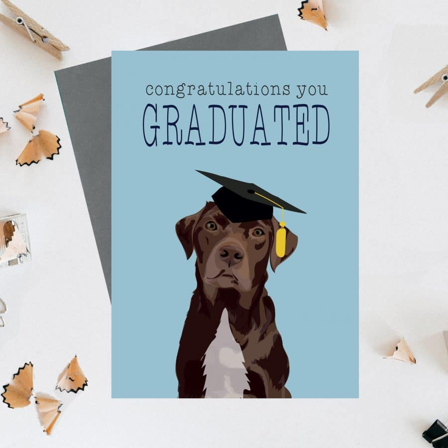 Greetings Card Luxury Designer Personalised Message Sustainable Environmentally Friendly FSC Paper Plastic Free - chocolate labrador - congratulations you graduated