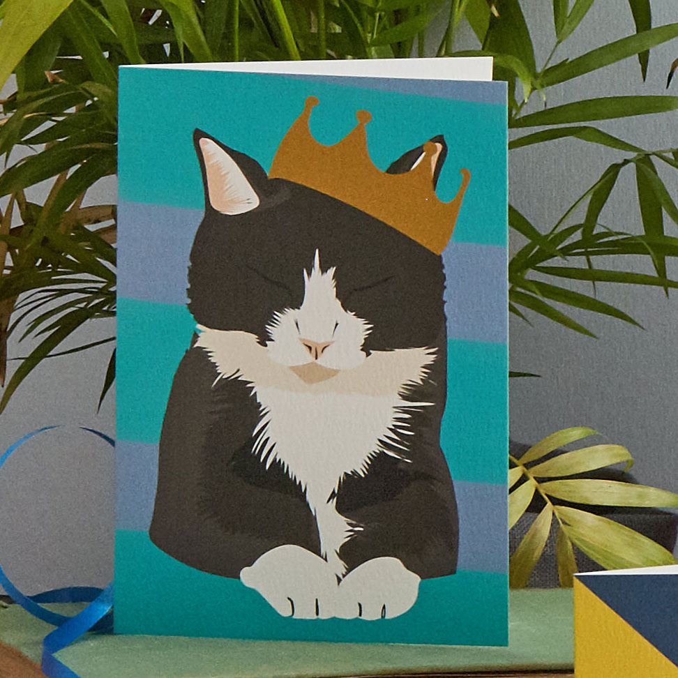 lorna Syson Greeting cards Greeting cards Illustrated cards Cat Cards