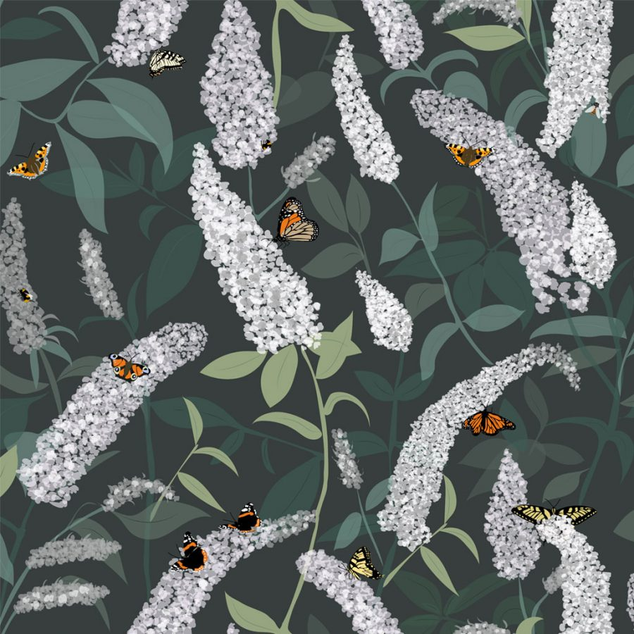 Designer Buddleia Wallpaper - Flowers and Butterflies - Lorna Syson