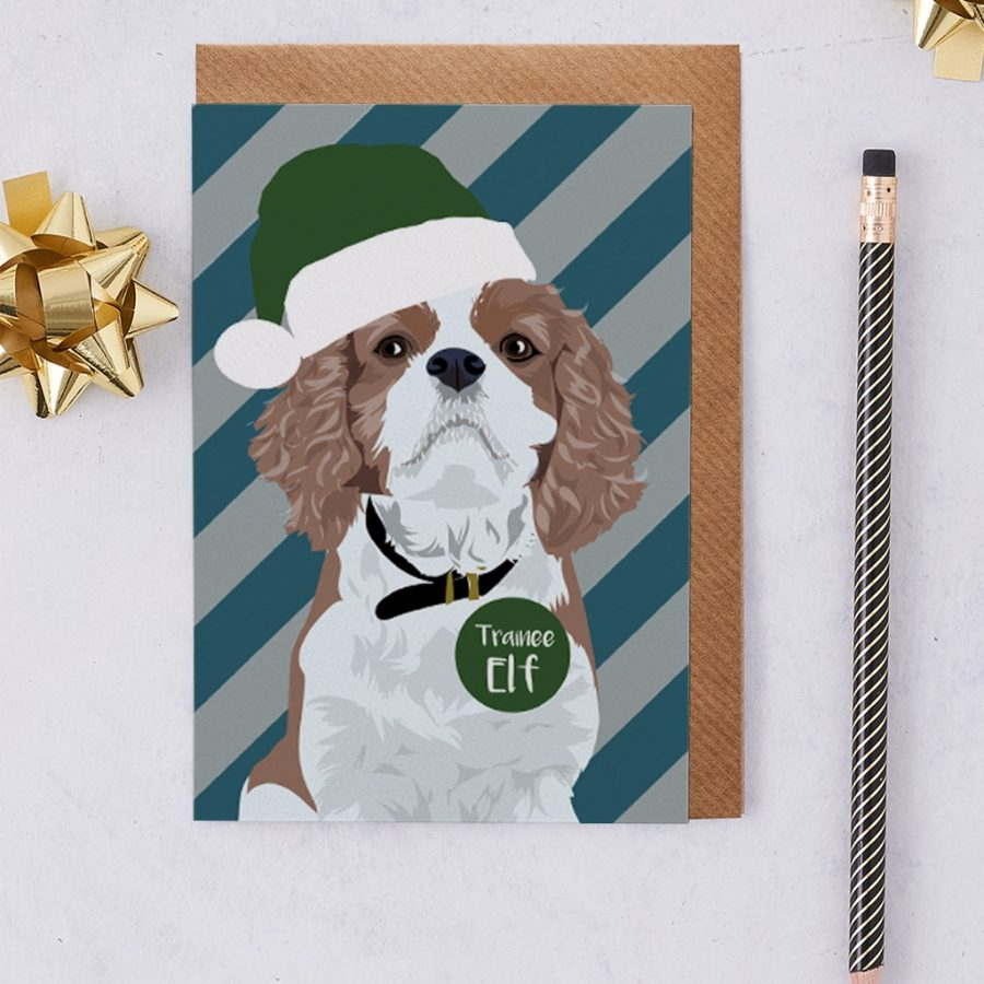 King Charles Spaniel darcey being Santa's little helper with hat and badge