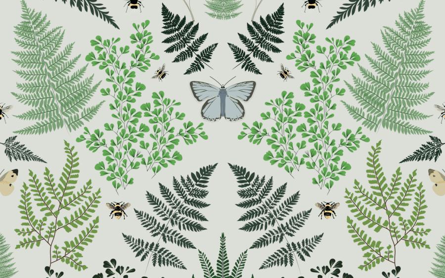 Ferns Gift Wrap