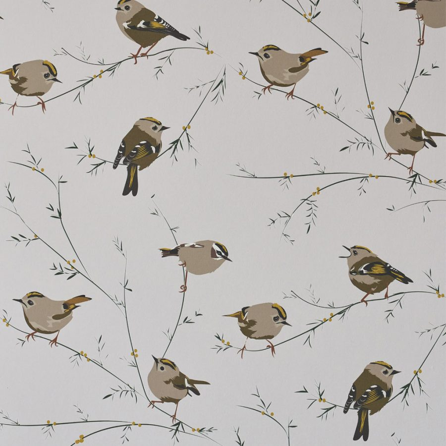 Bird Wallpaper - Goldcrest bird - brown, beige and grey - Lorna Syson living