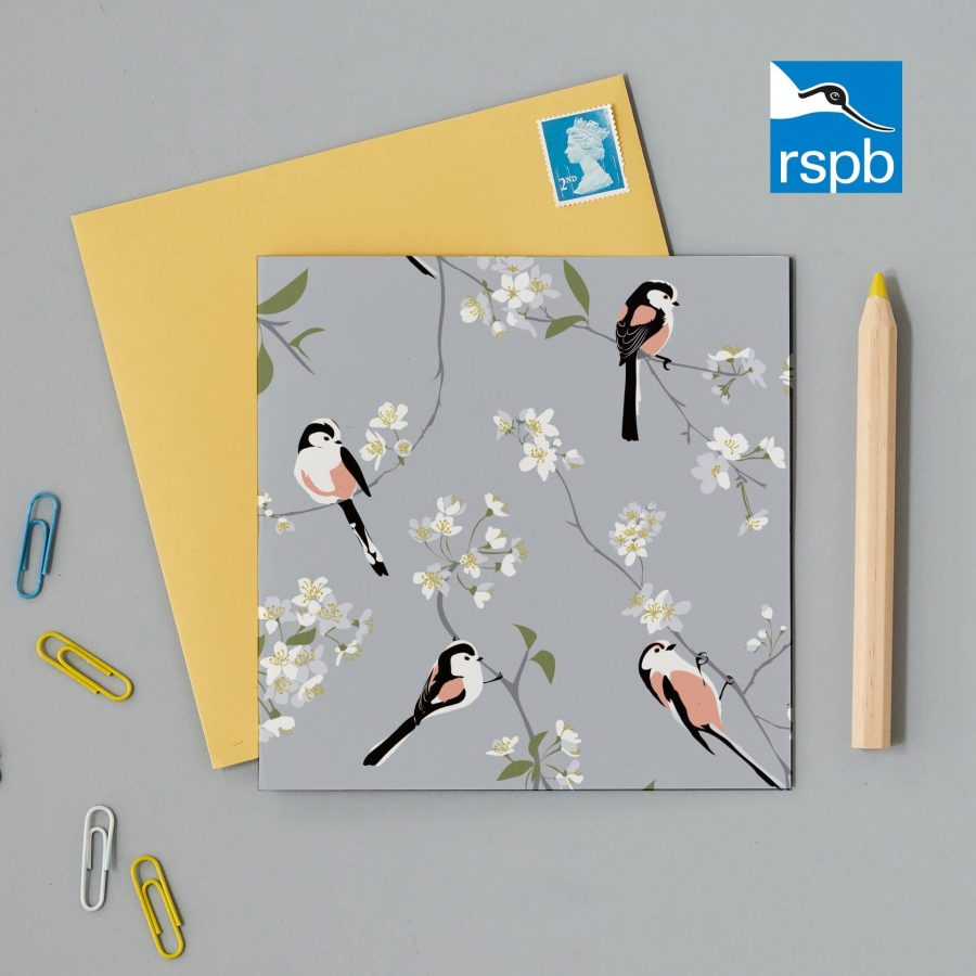 Greetings Card Luxury Designer Personalised Message Sustainable Environmentally Friendly FSC Paper Plastic Free RSPB bird RSPB blossom and bird grey greeting card by Lorna Syson