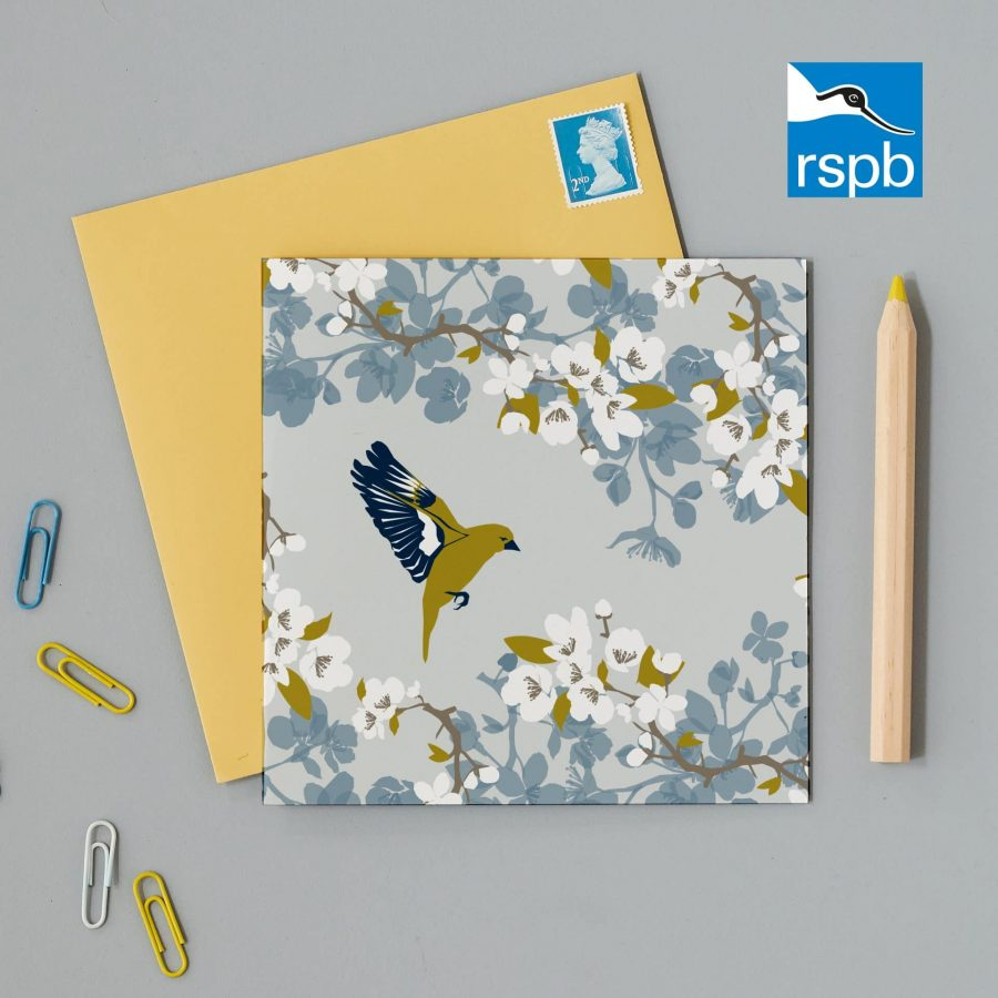Greetings Card Luxury Designer Personalised Message Sustainable Environmentally Friendly FSC Paper Plastic Free RSPB bird RSPB greenfinch greeting card designed by Lorna Syson