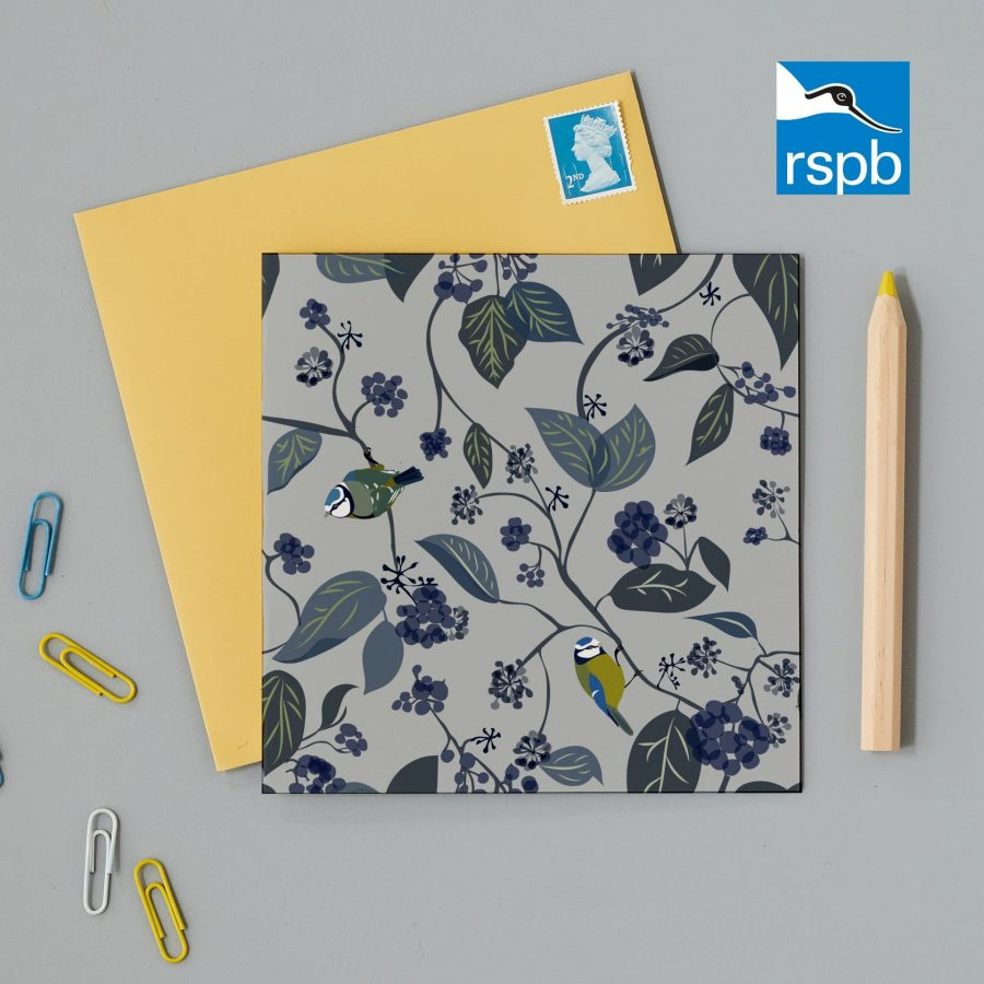 Greetings Card Luxury Designer Personalised Message Sustainable Environmentally Friendly FSC Paper Plastic Free RSPB bird RSPB Blue tit greeting card design. Charity greeting cards