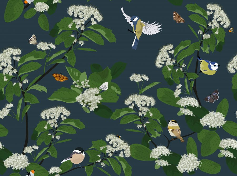Blue Dark Green Bird Floral Designer Wallpaper UK Luxury British Birds Handmade Patterns Designer Lorna Syson Butterfly Flora Fauna Watlington