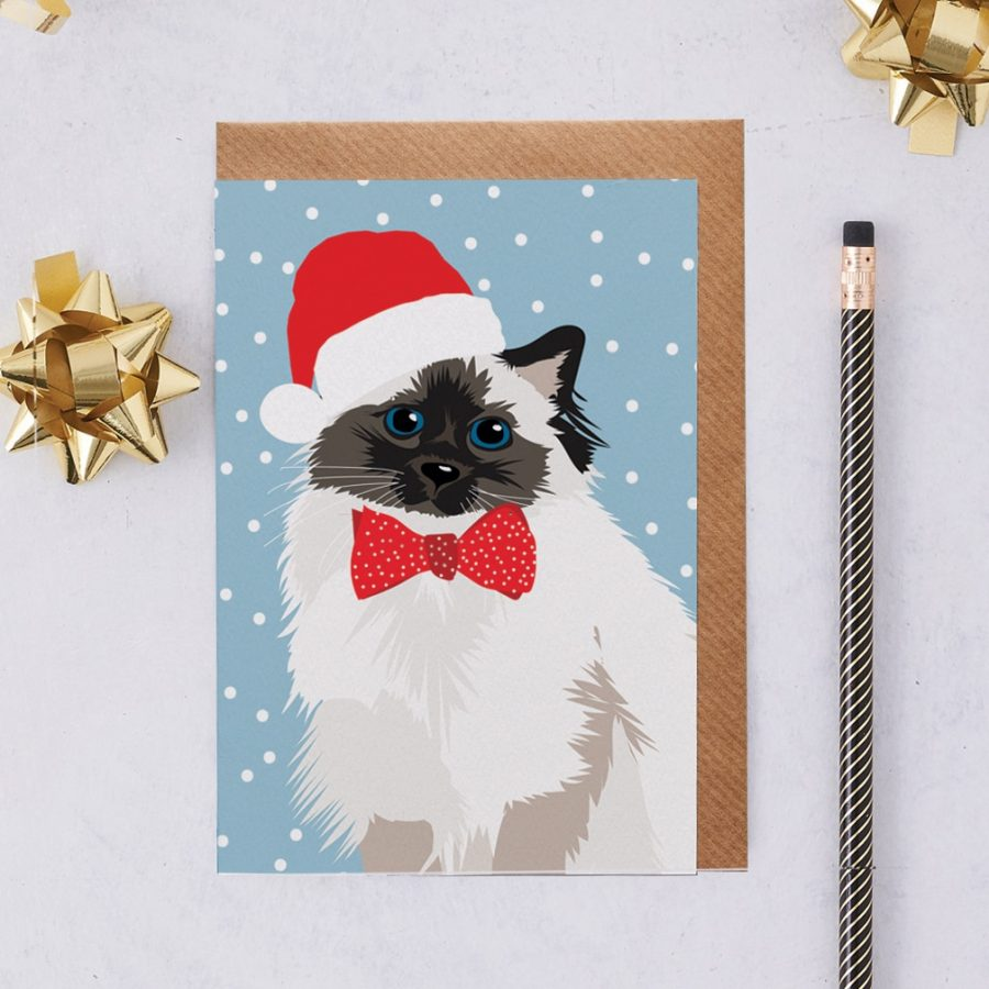 Christmas Card Luxury Designer Personalised Message Sustainable Environmentally Friendly FSC Paper Plastic Free - Christmas Persian cat called meg