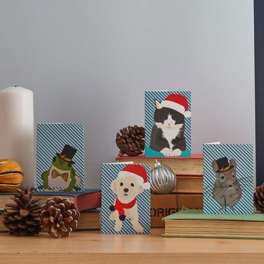Lorna Syson pet christmas card pack