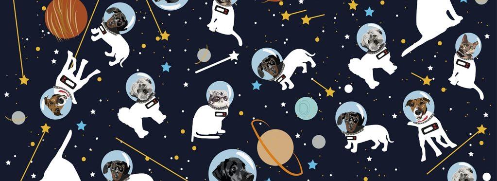 astro pets wrap