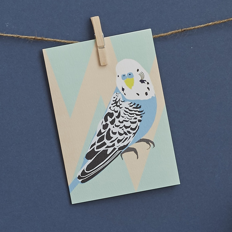 ben the budgie by lorna syson