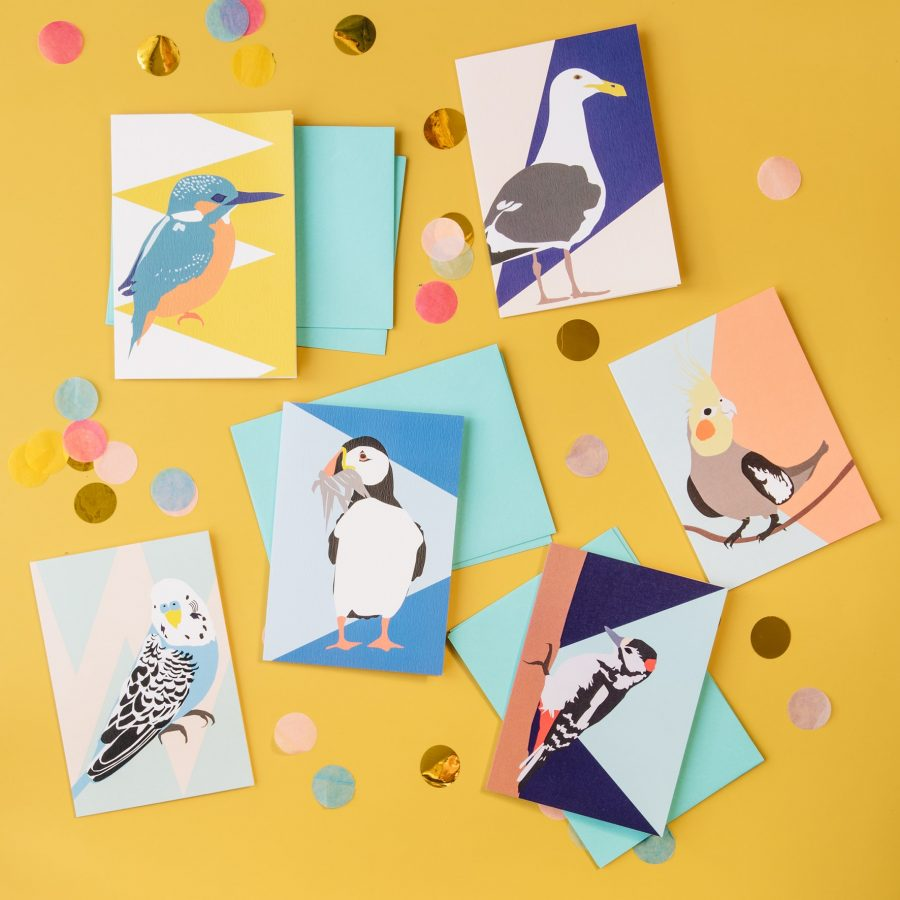 luxurty greeting cards, plastic free, FSC paper, british designer, designer greeting cards, bird card, budgie, puffin, woodpecker, colourful bird pack, budgie, kingfisher, seagull, cockatiel