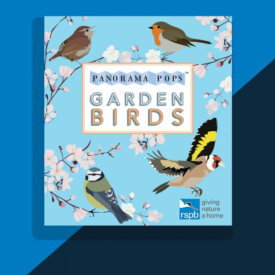 Garden Birds Book by RSPB illustrated by Lorna Syson