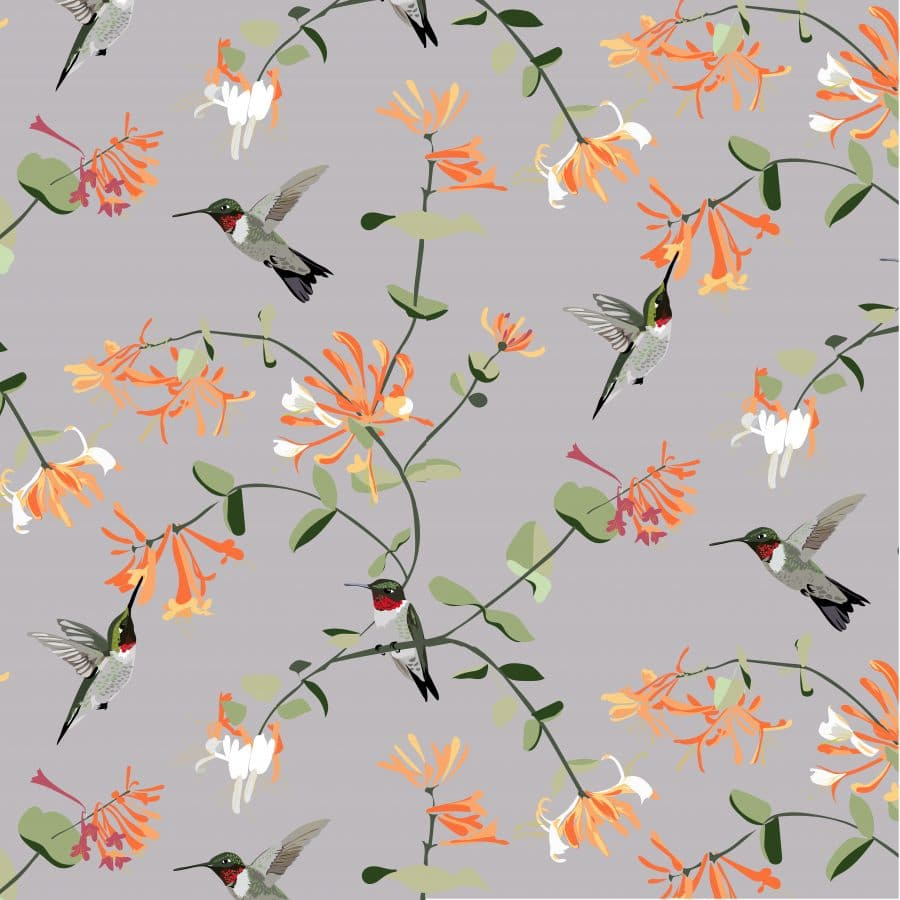 RSPB bird hummingbird wallpaper with grey and orange, british designer wallpaper, british wallpaper design, hallway, designer wallpaper, british wallpaper, hummingbird wallpaper, british flora and forna, charity wallpaper