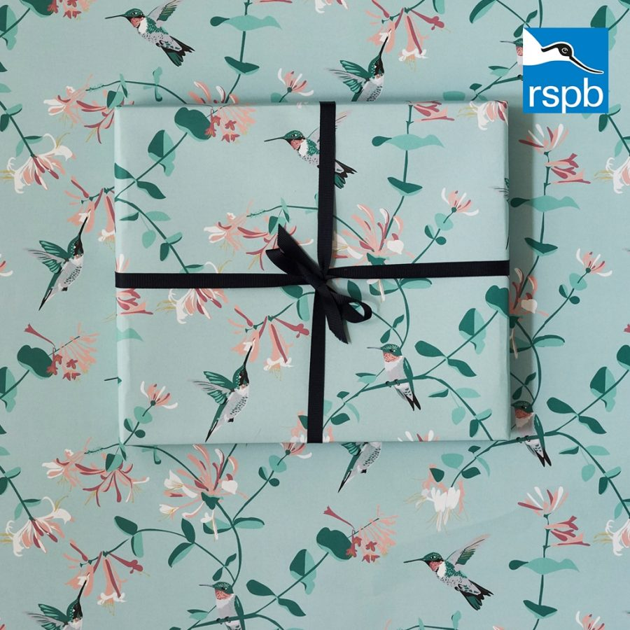 hummingbird mint wrapping paper by Lorna Syson in collaboration with the RSPB