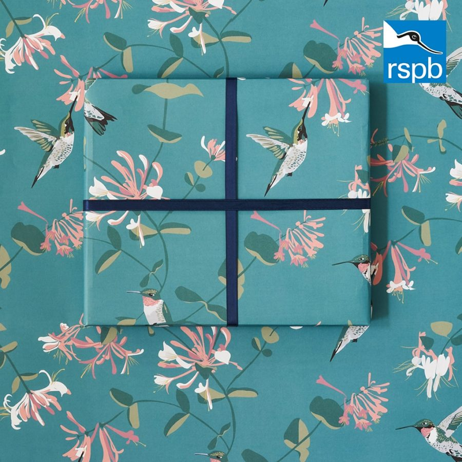 Hummingbird teal wrap RSPB / Lorna Syson collaboration