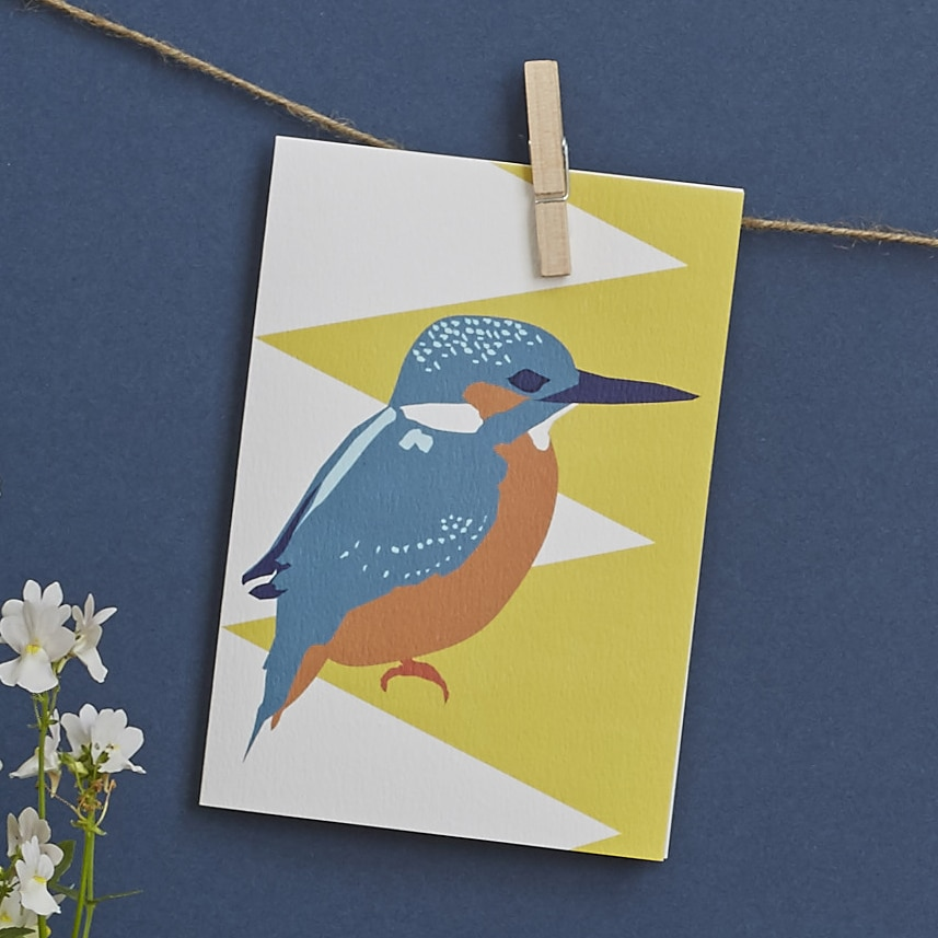 kingly the kingfisher by lorna syson