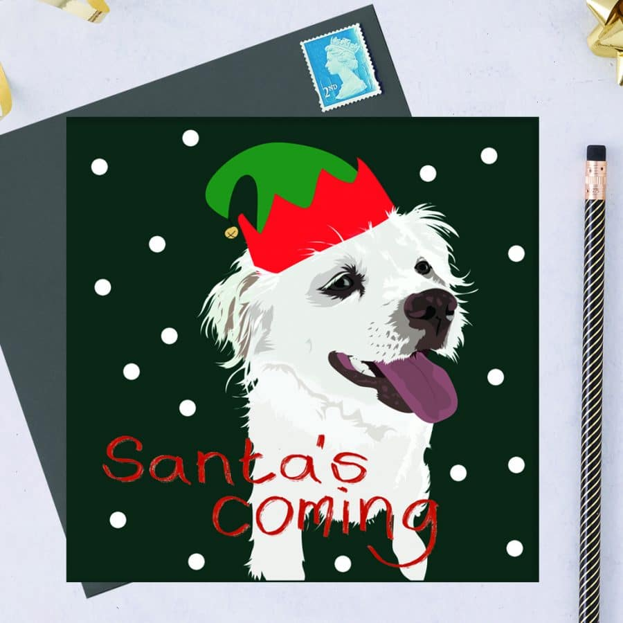 Christmas Card Luxury Designer Personalised Message Sustainable Environmentally Friendly FSC Paper Plastic Free hearing dogs dog charity card charity greetings card Marlo the rescue dog