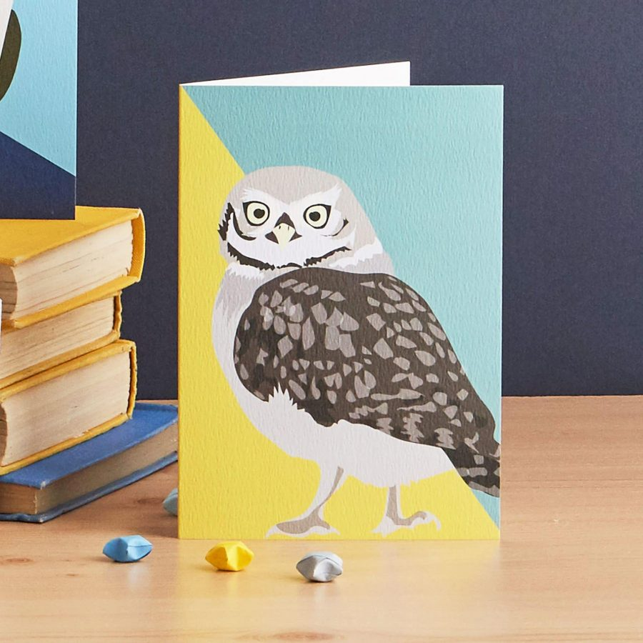 oliver the owl, part of the bird watching greetings card collection by lorna syson