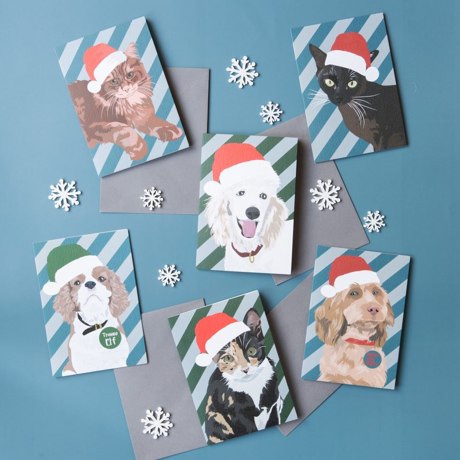 Christmas Pets Greeting card pack, poodle, siamese cat, kind charles spaniel, tabby cat, maine coon cat, cockapoo, christmas dog card, christmas cat card, eco-friendly, plastic free. luxury greeting card