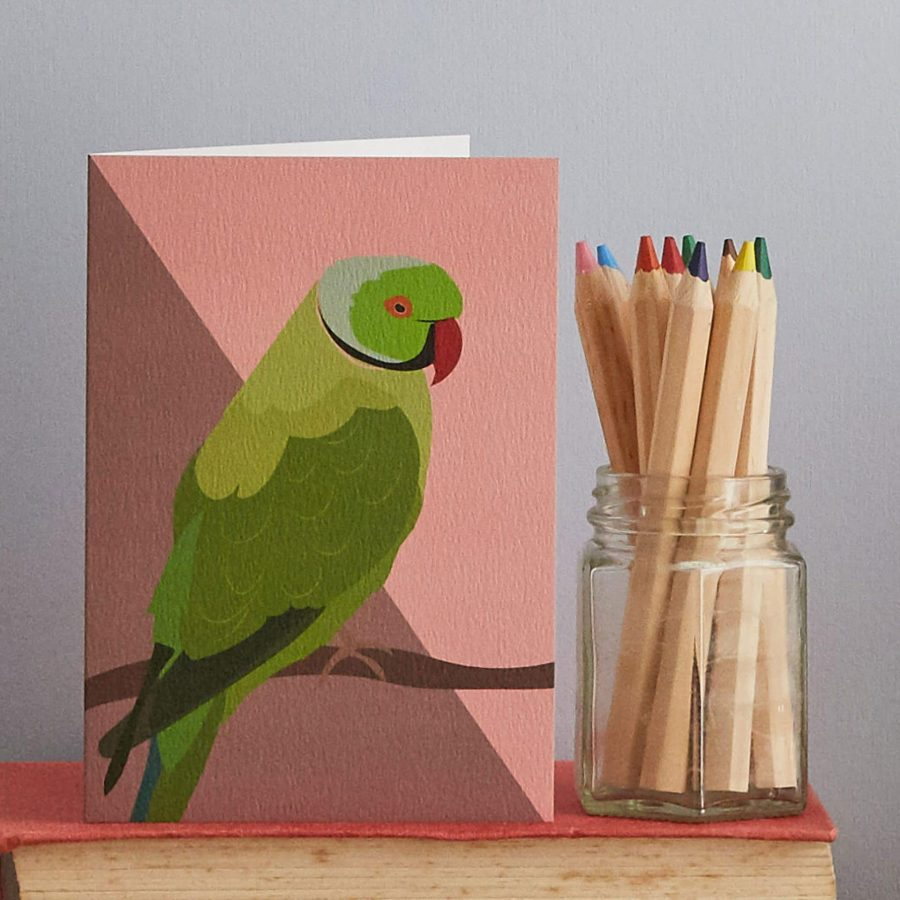 queenie the parakeet designed by Lorna Syson