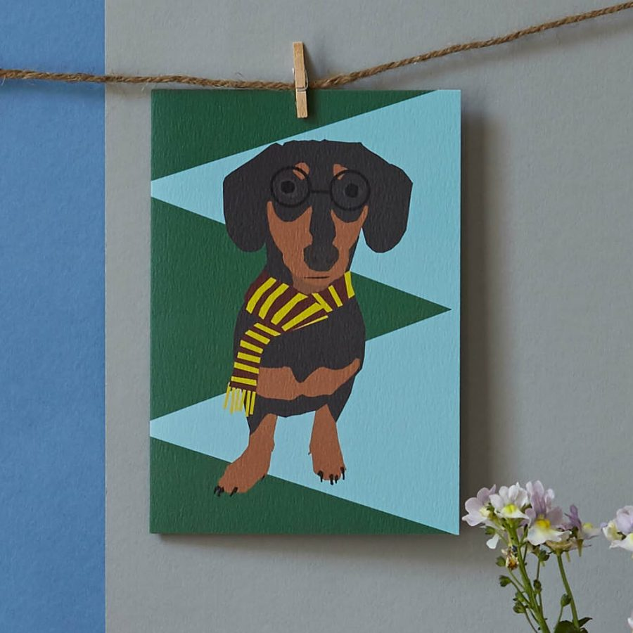 stephen the sausage dog by lorna syson