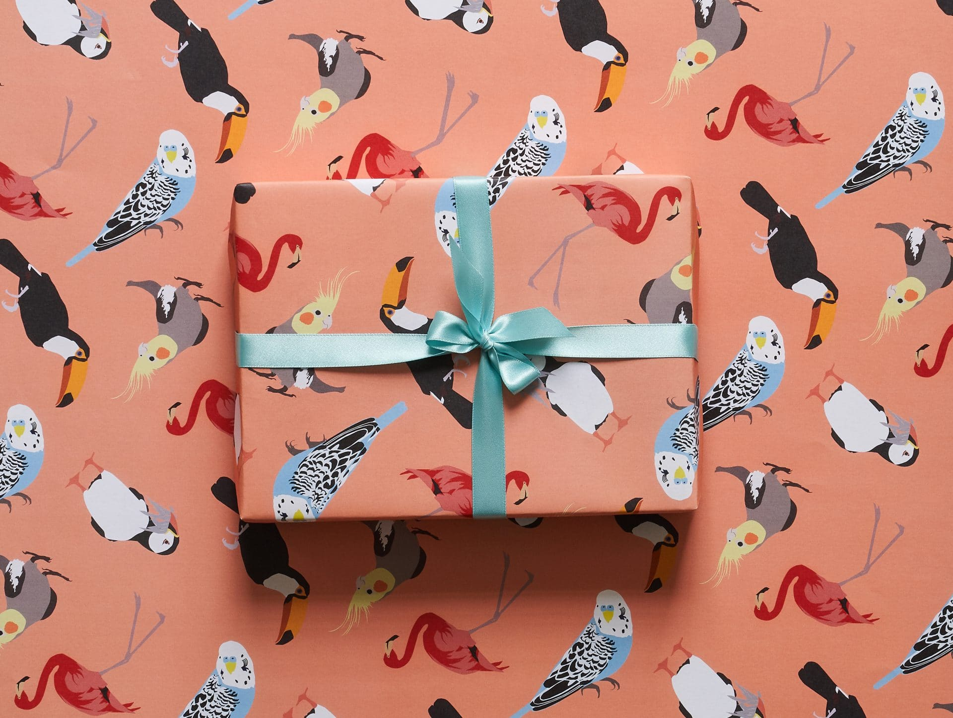 Bird watching gift wrap design by Lorna syson